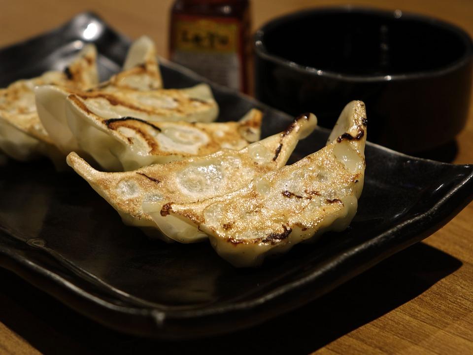 ニッポンの餃子